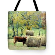 Smorgasbord Tote Bag by Jan Amiss Photography