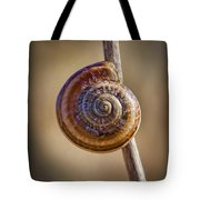 Snail On A Stick Tote Bag by Kelley King