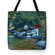 Sneaking Up On A Rainbow Tote Bag by Mary Benke