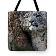 Snow Leopard Tote Bag by Karol  Livote