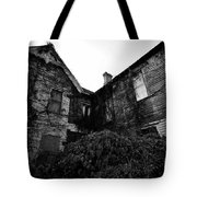 Something In The Window Tote Bag by David Lee Thompson