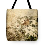 Sparrow In Winter I - Textured Tote Bag by Angie Tirado