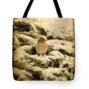 Sparrow In Winter II - Textured Tote Bag by Angie Tirado