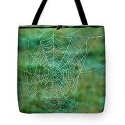 Spider Web In The Springtime Tote Bag by Douglas Barnett