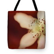 Spirit Tote Bag by Laurie Search