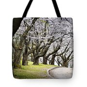 Spring Apple Orchard Tote Bag by Elena Elisseeva