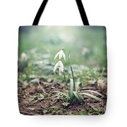 Spring Rising Tote Bag by Heather Applegate