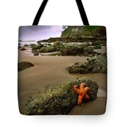 Starfish On The Rocks Tote Bag by Inge Johnsson