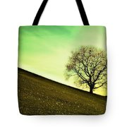Starting Springtime Tote Bag by Hannes Cmarits