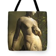 Statuesque Tote Bag by Jessica Jenney