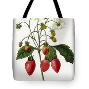 Strawberry Tote Bag by Granger