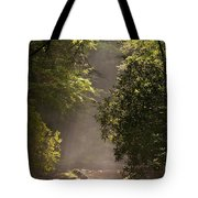 Stream Light Tote Bag by Steve Gadomski
