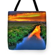 Stream Of Light Tote Bag by Scott Mahon