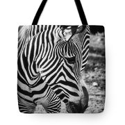 Stripes Tote Bag by Saija  Lehtonen