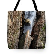 Stuck In The Middle Tote Bag by Christine Till
