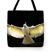 Sulphur Crested Cockatoo In Flight Tote Bag by Avalon Fine Art Photography