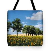 Sunflower Field 2 Tote Bag by SK Pfphotography