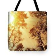 Sunlit Tree Tops Tote Bag by Wim Lanclus