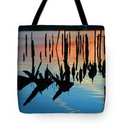 Sunset In Colonial Beach Virginia Tote Bag by Clayton Bruster