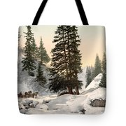 Switzerland: Davos, C1895 Tote Bag by Granger
