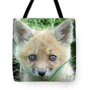 Take Me Home Tote Bag by Everet Regal