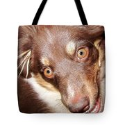 Talking Dog Tote Bag by Gwyn Newcombe