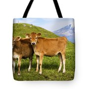 Taranaki, Dairy Cows Tote Bag by Himani - Printscapes