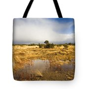 Tasmanian Storm  Tote Bag by Mike  Dawson