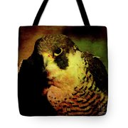 The Falcon Tote Bag by Wingsdomain Art and Photography