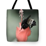 The Sweet Spot Tote Bag by Charles Dobbs