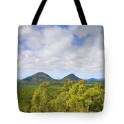 The Twins Tote Bag by Mike  Dawson