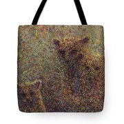 Three Bears Tote Bag by James W Johnson