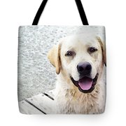 Three Friends Tote Bag by Sharon Cummings