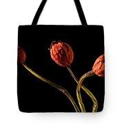 Three Rose Hips Tote Bag by  Onyonet  Photo Studios