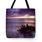 Tide Driven Tote Bag by Mike  Dawson