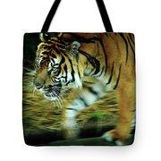 Tiger Burning Bright Tote Bag by Rebecca Sherman