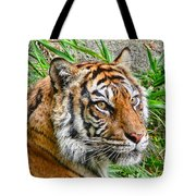 Tiger Portrait Tote Bag by Jennie Marie Schell