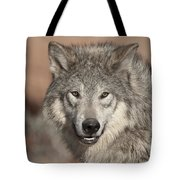 Timber Wolf Portrait Tote Bag by Sandra Bronstein