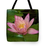 Touch of Pink Tote Bag by KAREN WILES