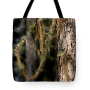 Tree Moss - Green Soft Beauty Tote Bag by Christine Till