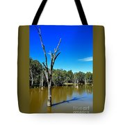 Tree Stumps In Beauty Tote Bag by Kaye Menner