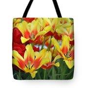 Tulips Glorious Tulip Monsella Tote Bag by Debra  Miller