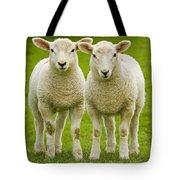 Twin Lambs Tote Bag by Meirion Matthias