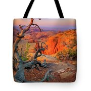 Twisted Remnant Tote Bag by Inge Johnsson