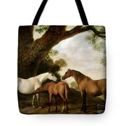 Two Mares and a Foal Tote Bag by George Stubbs
