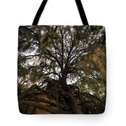 Under Spanish Moss Tote Bag by David Lee Thompson