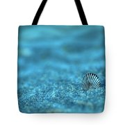 Underwater Seashell - Jersey Shore Tote Bag by Angie Tirado