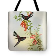 Urochroa Bougieri Tote Bag by John Gould