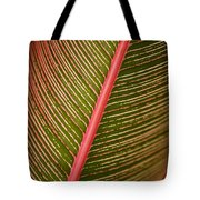 Variegated Ti-leaf 2 Tote Bag by Ron Dahlquist - Printscapes