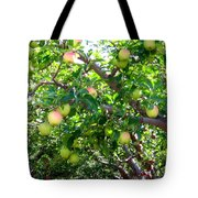 Vintage Tractor In Apple Orchard Tote Bag by Will Borden